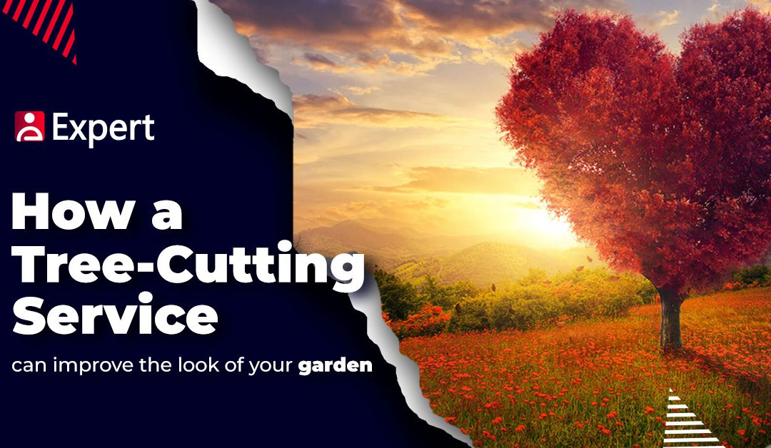How A Tree-Cutting Service Can Improve The Look of Your Garden